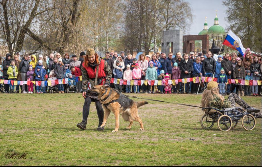 собака спасает раненого