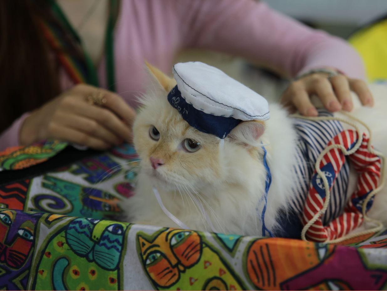 моряк-сибиряк 3