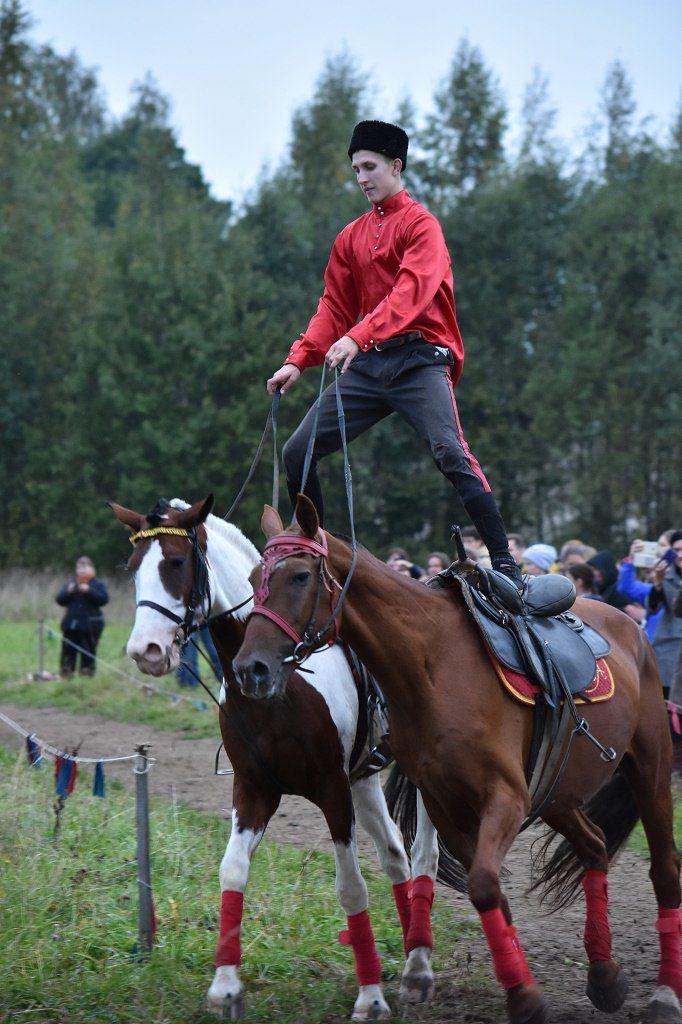 альфа кони 2