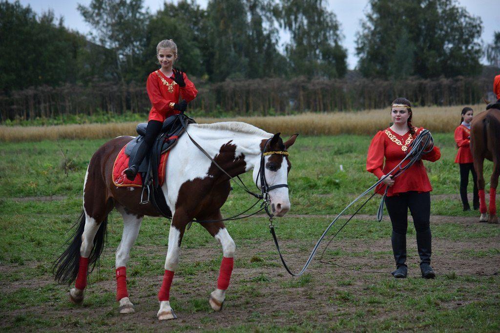 альфа кони 3