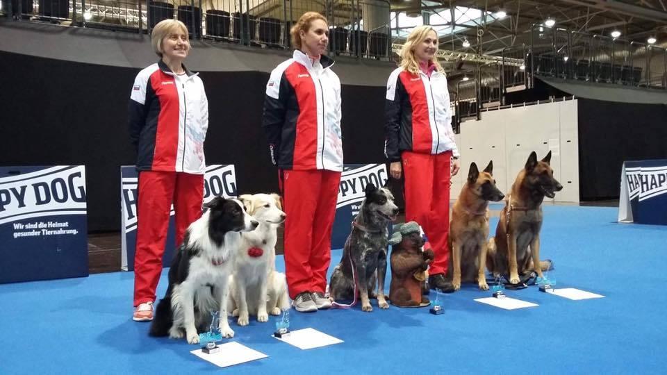 чемпионат по танцам с собаками