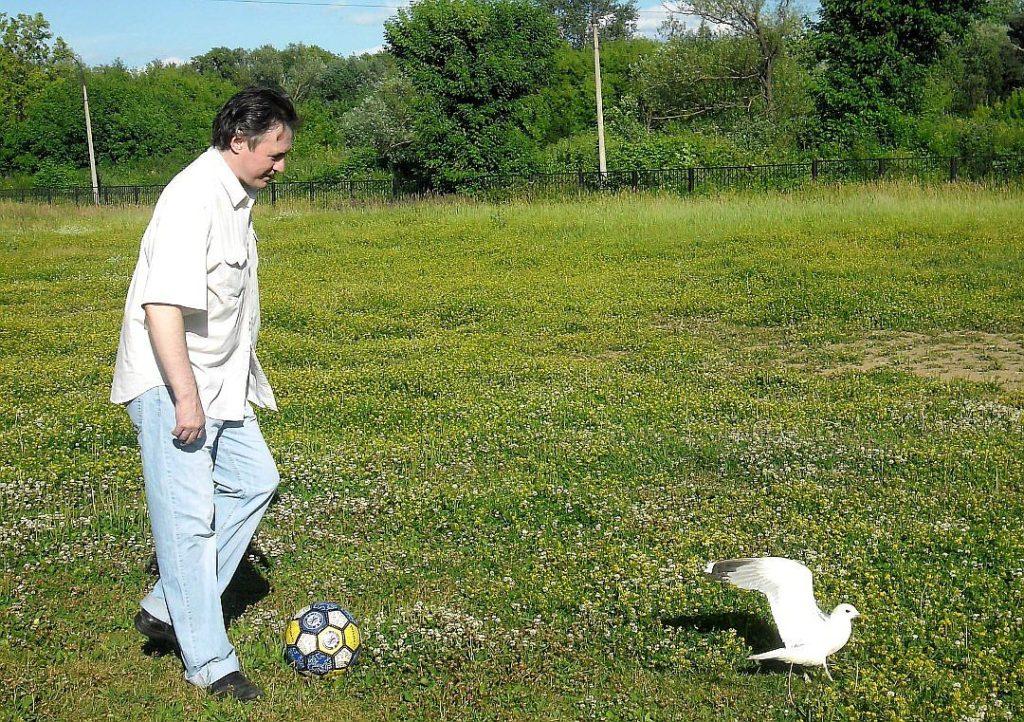 футбол с чайкой
