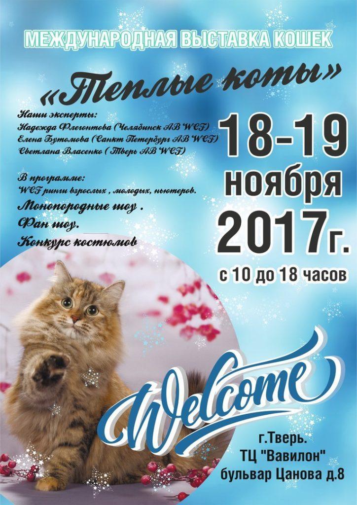 выставка Тёплые коты