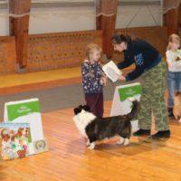 награждение детей выставка собак виола