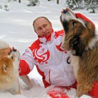 Путин с собаками