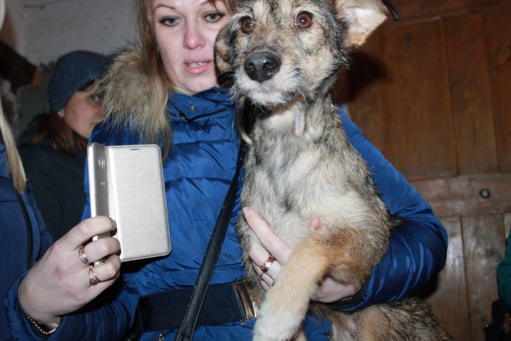спасенная собака Ржев