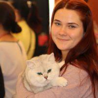 девушка с британским котом
