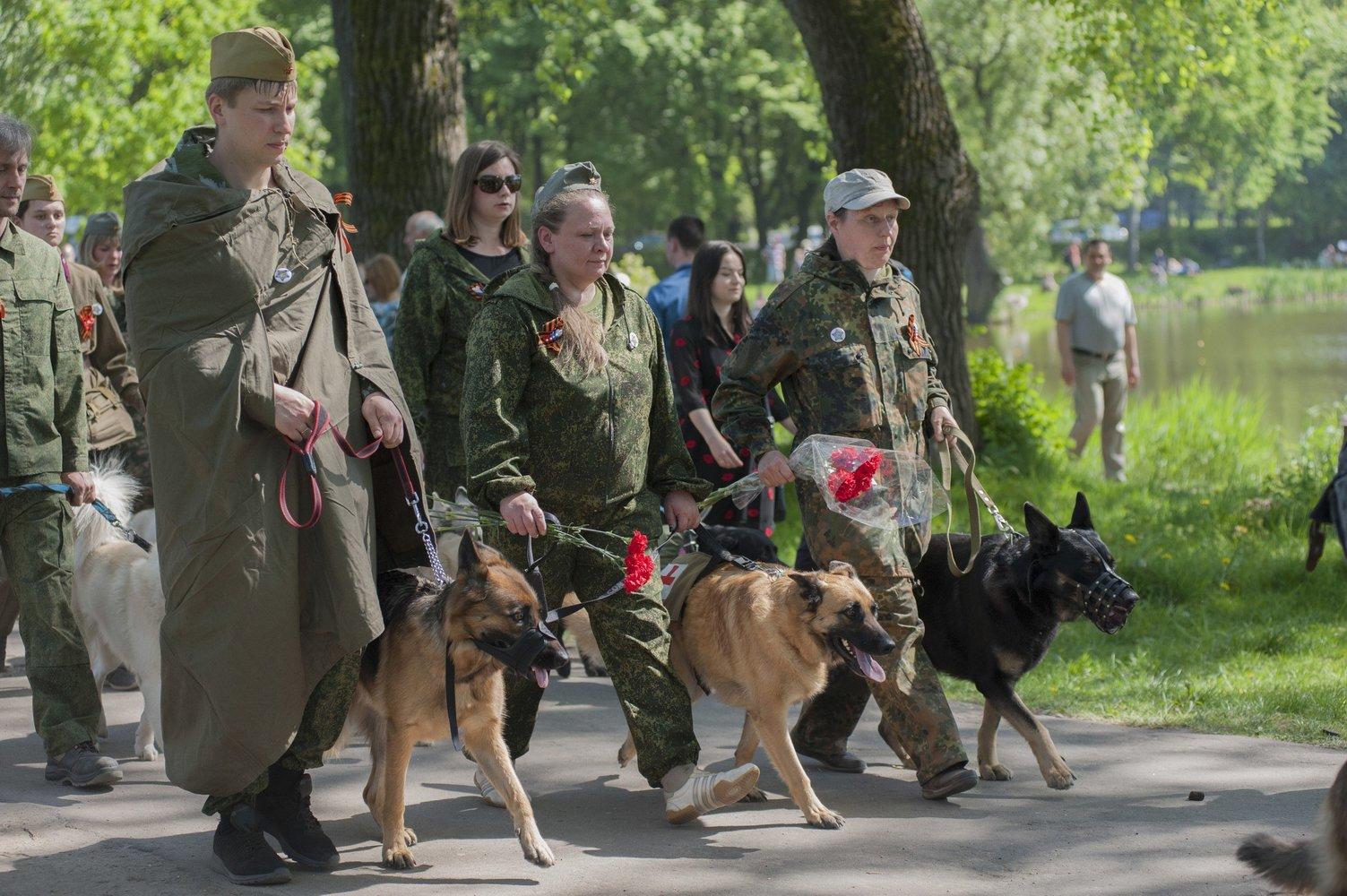 лохматый полк калининград 3