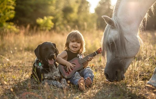 мальчик в окружении животных