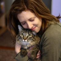 объятия с котом