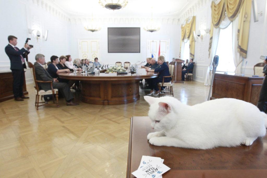 Декларация обращения с животными