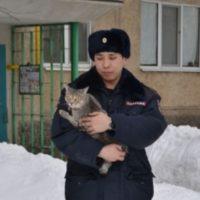 полицейский и кот