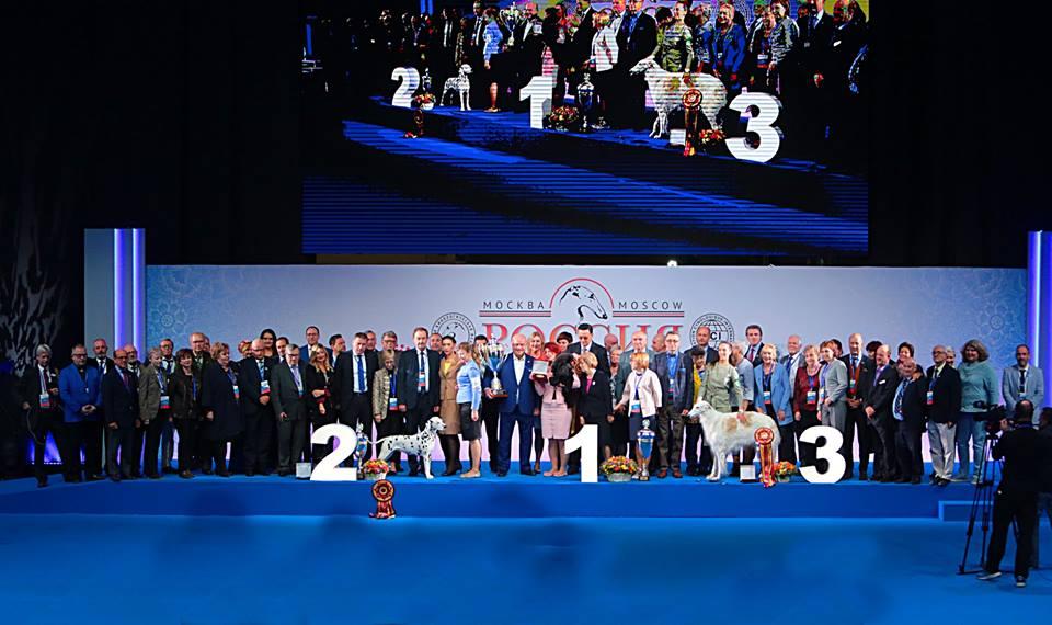 выставка собак Россия 2018 (3)