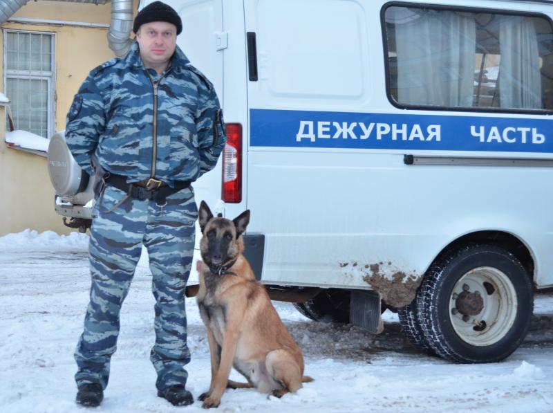 полицейская овчарка нашла вора