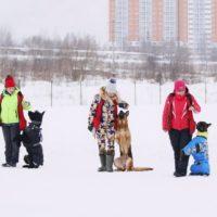 школьники и собаки 3