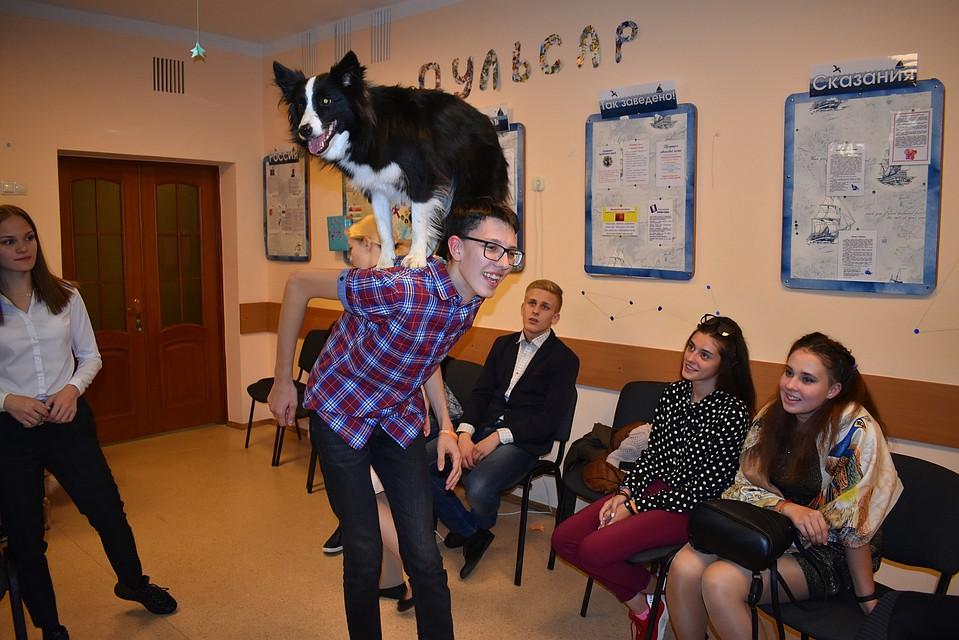собака терапевт тольятти 2
