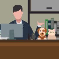 юрист и животные