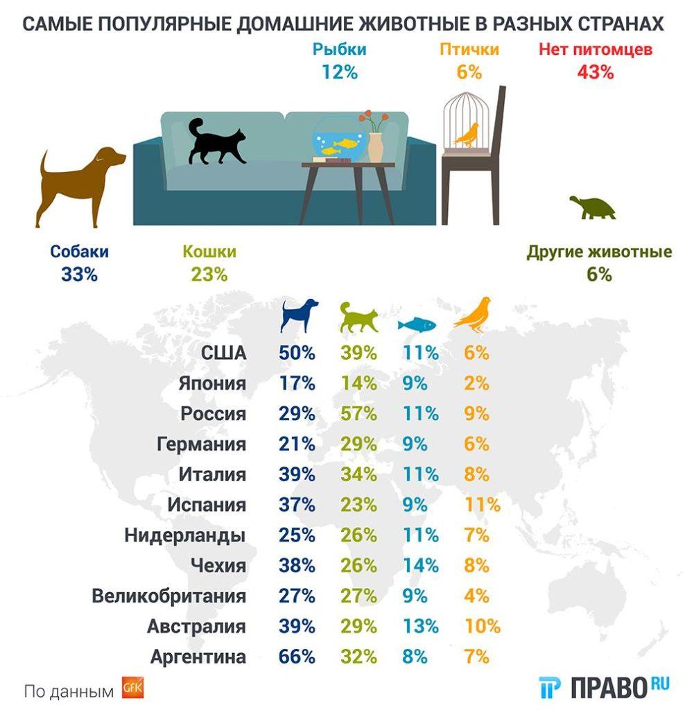 самые популярные животные