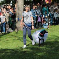 собака десантник парад собак
