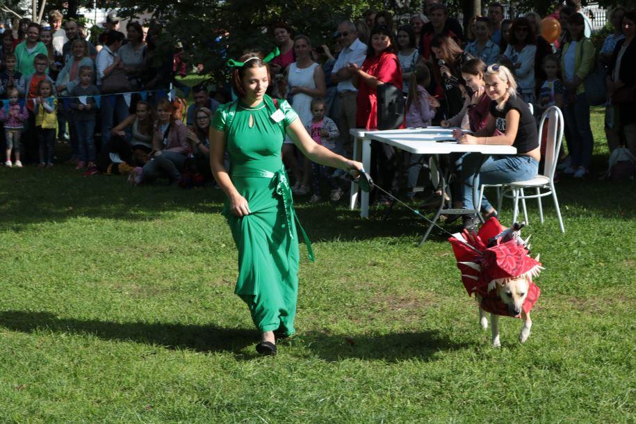 собака дракон парад собак