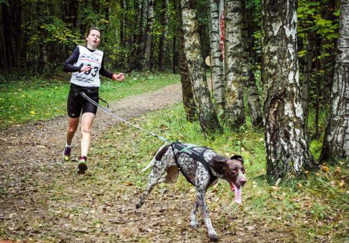 страгулина и собака 2