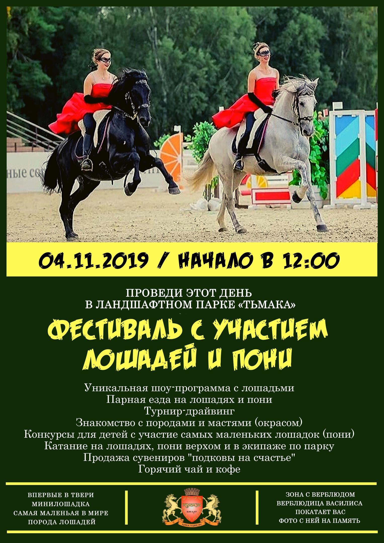 фестиваль с участием лошадей и пони