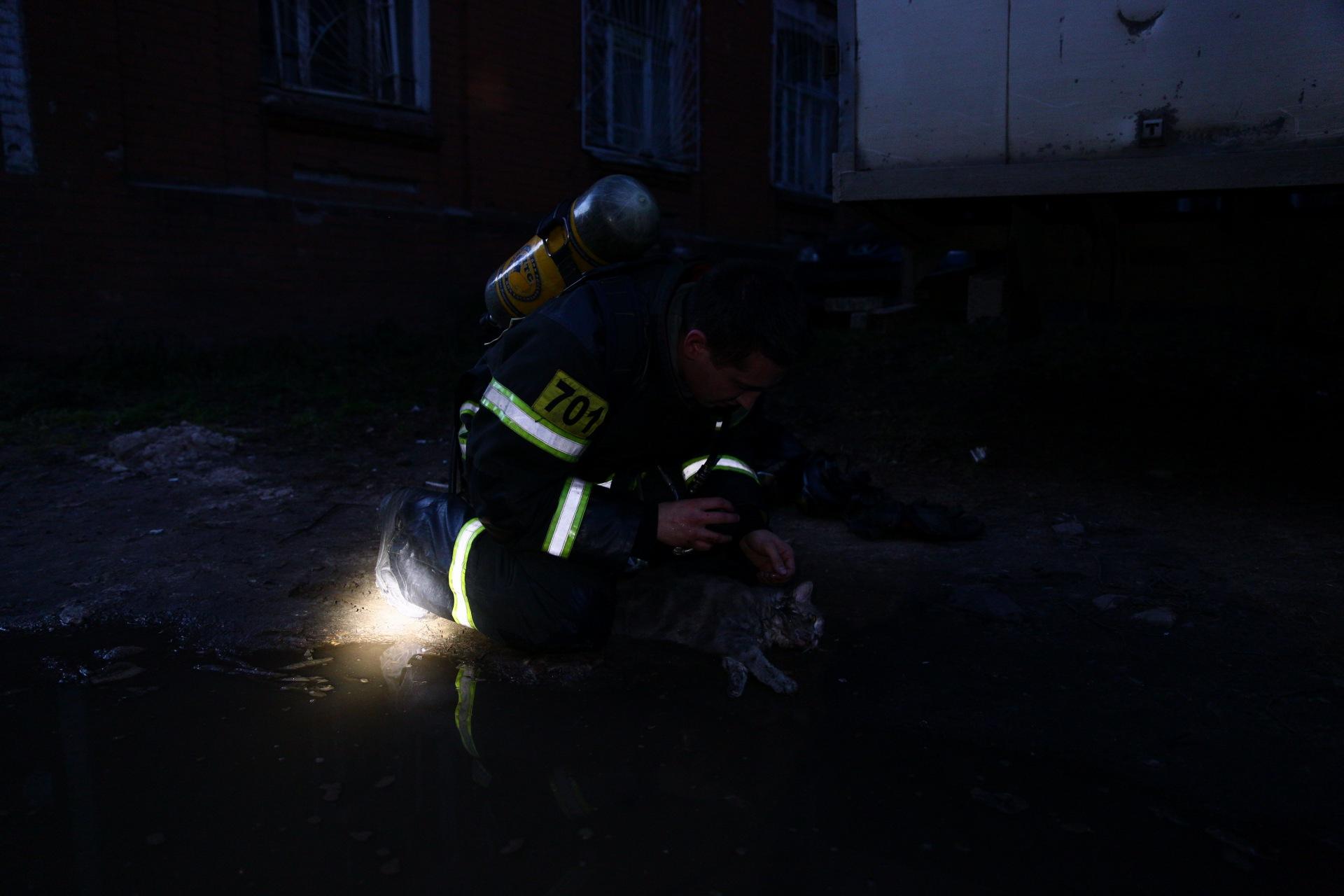 пожарный и кот 3