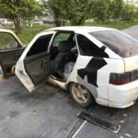 Хаски погибли в машине 2