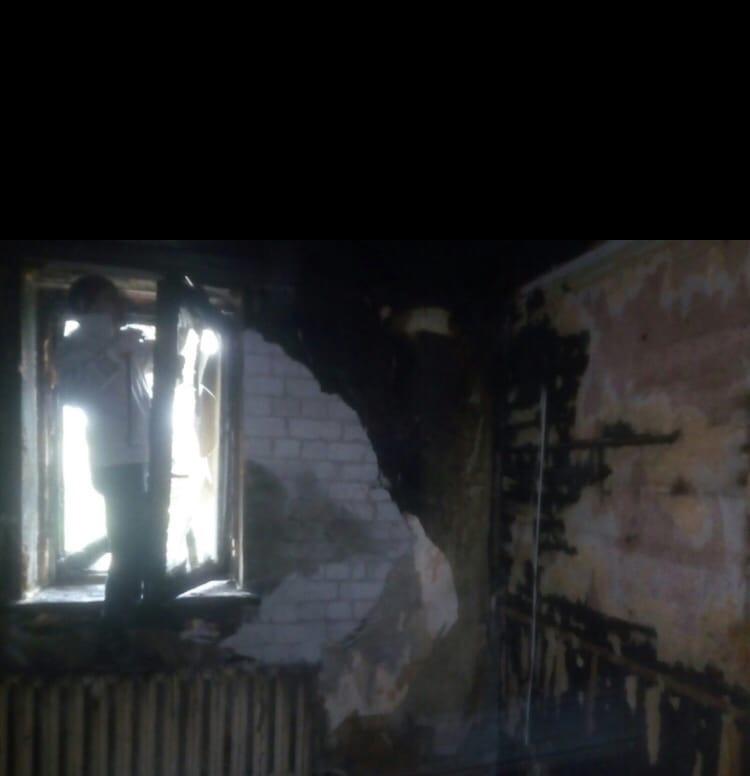 кошки из сгоревшего дома 3