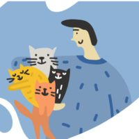 проект кошки в городе