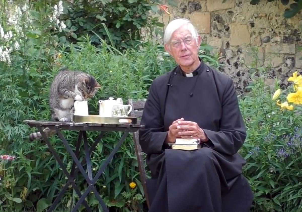 кот тигр пьет молоко на проповеди