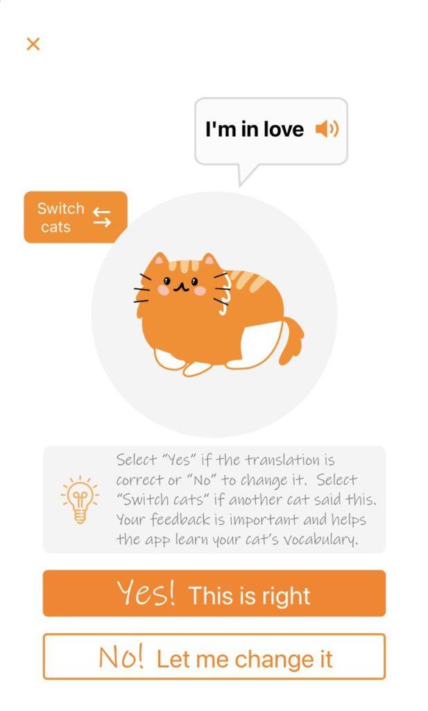 приложение-переводчик с кошачьего 2