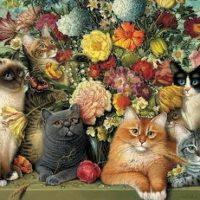 выставка кошек 21-11-20