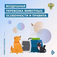 воздушная перевозка животных